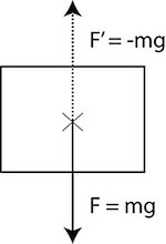 Figure 6: A downward force acting on an object and an equal and opposed force cancelling gravity.