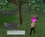secondlife:secondlife_information_heads-up_display.png